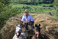 Like everywhere in Romania, they make hay in the old-fashioned way, using horse-pulled carts. This stereotypical representation nonetheless reminds us that mechanization is not possible for small family farms depending on self-sufficiency. Many Romanian farmers have another job in the small industries that dot the countryside.