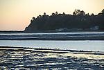 Bolinas Lagoon at low tide