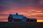 Washington, Eastern, Ritzville. A red barn at sunset in winter.