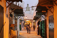 A narrow street in the medina or old town, with the minaret of the 18th century Zaouiat Sidi ali Benraisoun or Octagonal Mosque in the distance, Tetouan, on the slopes of Jbel Dersa in the Rif Mountains of Northern Morocco. Tetouan was of particular importance in the Islamic period from the 8th century, when it served as the main point of contact between Morocco and Andalusia. After the Reconquest, the town was rebuilt by Andalusian refugees who had been expelled by the Spanish. The medina of Tetouan dates to the 16th century and was declared a UNESCO World Heritage Site in 1997. Picture by Manuel Cohen