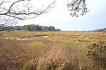 Salt Marsh Overlook, Welfleet Bay Wildlife Sanctuary, Audubon