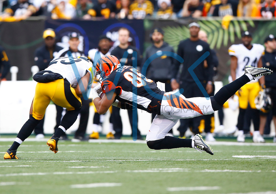 Tyler Eifert #85 of the Cincinnati Bengals is hit by Mike Mitchell #23 of the Pittsburgh Steelers after catching a pass in the first quarter during the game at Paul Brown Stadium on December 12, 2015 in Cincinnati, Ohio. (Photo by Jared Wickerham/DKPittsburghSports)