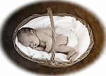 Newborn Portraits & Styling