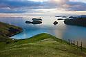 Hilly sheep meadows on east coast of Coromandel Peninsula, North Island, New Zealand