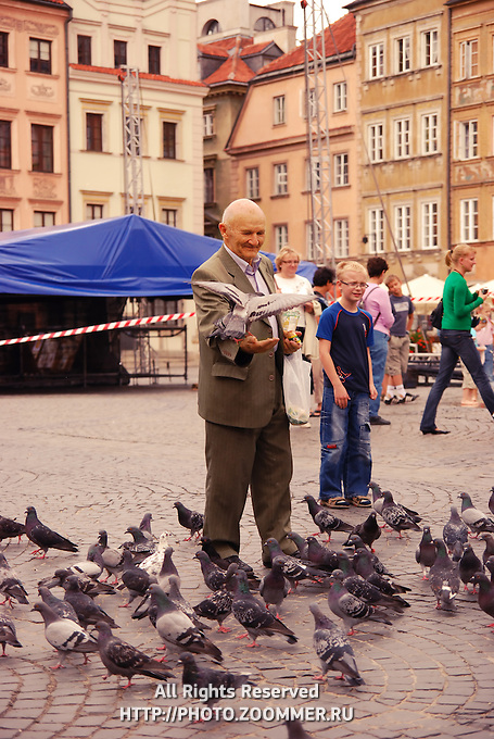 Man feeds pigeons in Warsaw stare miasto square