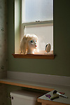 Woman's Mannequin head along window sill with mirror