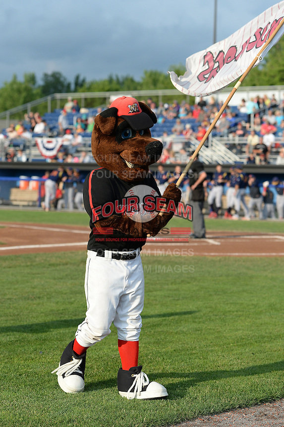 Batavia Muckdogs mascot Homer waves the team flag before a game against the State College Spikes on July 3, 2014 at Dwyer Stadium in Batavia, New York.  State College defeated Batavia 7-1.  (Mike Janes/Four Seam Images)