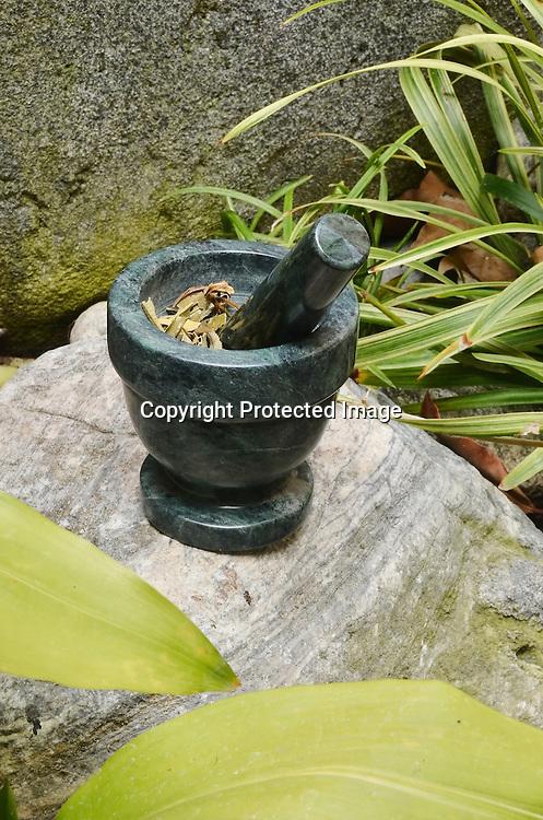 Stock Photo of Holistic Herbs