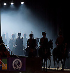 Horse of the Year Show (HOYS) 2013 - NEC - Birmingham