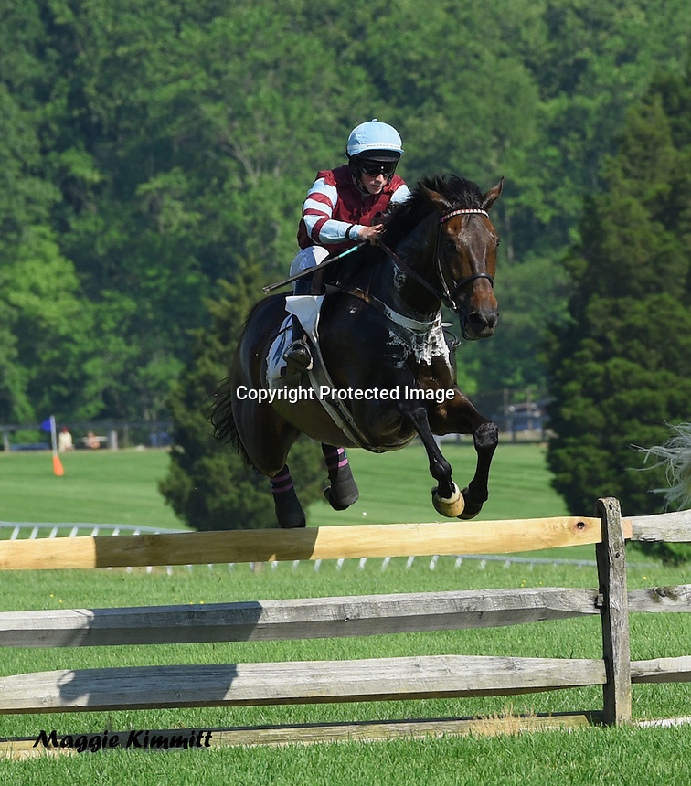 2016 Fair Hill Races