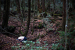 An unidentified man lies dead from what appears to be an overdose  in Aokigahara Jukai, better known as the Mt. Fuji suicide forest, which is located at the base of Japan's famed mountain west of Tokyo, Japan.