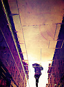 Frommy Rain Shadows