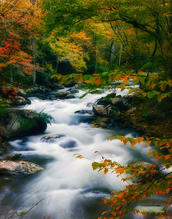 Fall image of the Little River, Tremont section of the Great Smoky Mountains National Park. Smoky Mountain photos by Gordon and Jan Brugman.