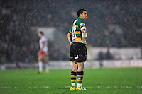 George Pisi of Northampton Saints looks on during a break in play. Aviva Premiership match, between Northampton Saints and Gloucester Rugby on November 27, 2015 at Franklin's Gardens in Northampton, England. Photo by: Patrick Khachfe / JMP