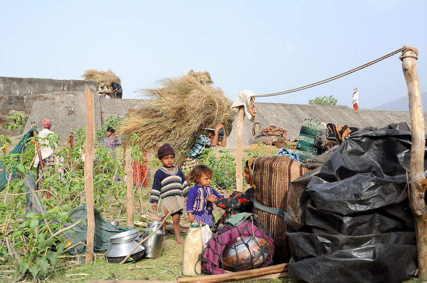 At a junction of migration trails,  hundreds of Van Gujjar families camp alongside one another.