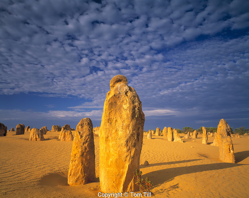 Morning Clouds in the Pinnacles Desert, Nambung National Park, Western Australia, Australia