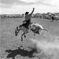 A saddle bronc leaps during the Earl Anderson Memorial Rodeo in Grover, Colo.