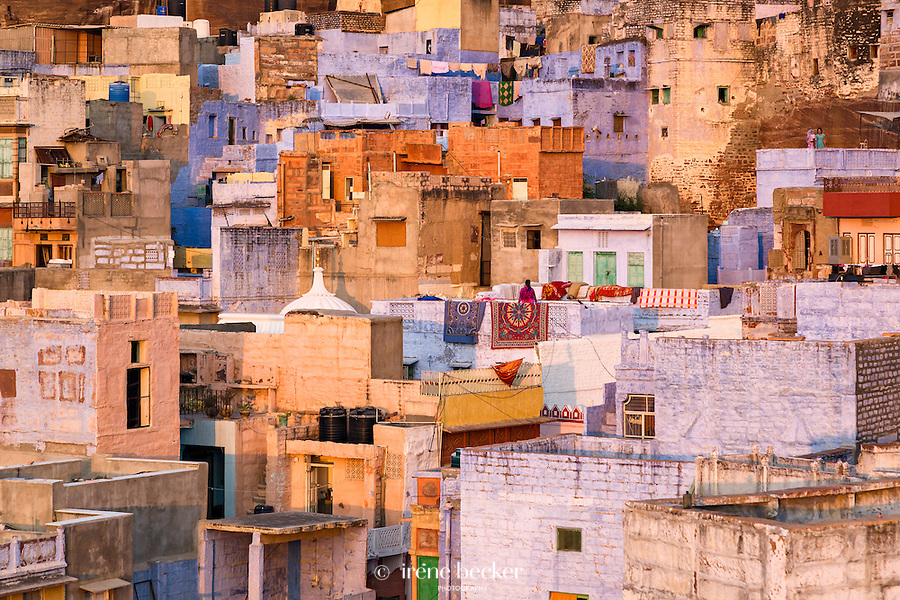 Jodhpur. Rajasthan, India.