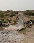 """The Roman """"main street,"""" the Decumanus Maximus, at the biblical town of Gadara, now called Umm Qais in northwestern Jordan.  © Rick Collier"""