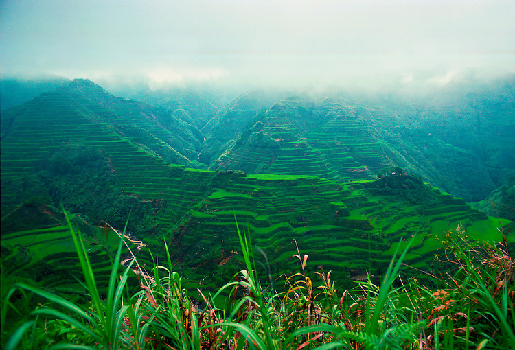 Banalie Rice Terraces, Philippines