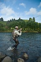 Mann kjører regnbueørret ---- Man fighting rainbow trout