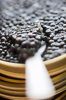 France, Gironde (33),Bassin d'Arcachon,  Le Teich:  L&rsquo;Esturgeonni&egrave;re, caviar d&rsquo;Aquitaine <br />  //  France, Gironde, Bassin d'Arcachon, Le Teich: The Esturgeonni&egrave;re, Aquitaine caviar