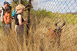 Hartebeest (Yamazon) & Earthwatchers