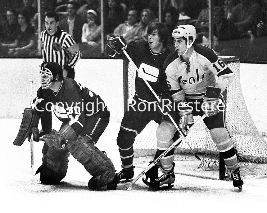 hockey71.jpg