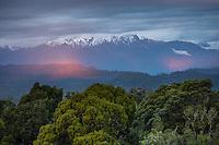 Views across coastal native forest of Okarito Lagoon toward Mount Adams after sunset with last beams of light, Westland Tai Poutini National Park, West Coast, South Westland, UNESCO World Heritage Area, New Zealand, NZ