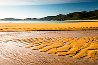 Orange coloured, quartz sand of pristine and empty beach in Totaranui on Abel Tasman Coastal Track, Abel Tasman National Park, Nelson Region, South Island, New Zealand