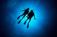 Diver silhouette