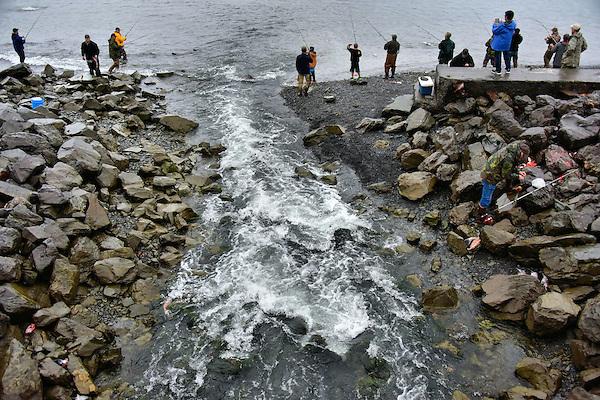 Salmon fishing at scheffler creek in seward alaska for Seward alaska fishing