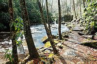 Stone trail along Little Stony Creek on an overcast winter day, Cascade Falls, Pembroke, Giles County, Virginia, USA.