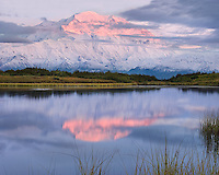 Denali Alpenglow