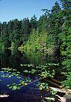 Mountain Lake in Moran State park