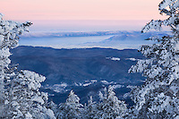 """WINTER WINDOW"" - A window through snow covered spruce and fir trees reveals fog and snow-capped mountains at sunrise below. Photographed near the summit of Round Bald along the Appalachian Trail in the Roan Highlands area."