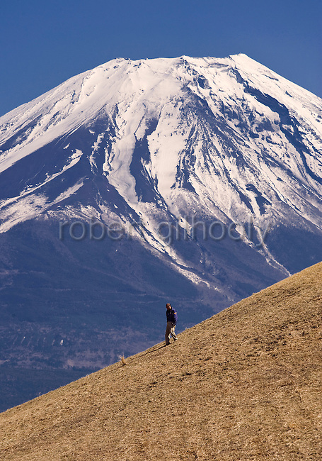 A man walks down a small mound near Mt Fuji located along a walk that takes trekkers through parts of the Asagiri Plateau in Shizuoka Prefecture Japan on 22 March 2013.  Photographer: Robert Gilhooly
