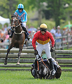 Radnor Hunt Races - 05/17/2014