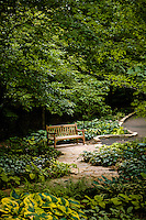 Bench on a path through a lush green garden at the Minnesota landscape arboretum.
