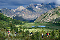The Highline trail, Alberta and British Columbia, Canada, August 2008. The Citadell Pass Trail, from Sunshine Meadows to Howard Douglas lake. The Banff Highline trail can be hiked in 7 days and runs through Banff National park as well as Assiniboine Provincial park. Photo by Frits Meyst/Adventure4ever.com