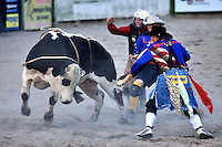 Bull ride, Rodeo Clown, Jackson Hole Rodeo, Jackson Hole, Wyoming