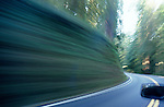 Moving car along Highway 199 running through Jedediah Smith Redwoods blurred roadway and car motion,Redwoods National Park Northern California near Crescent City, California State USA
