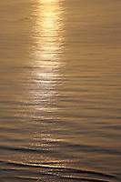 15 June 2006: Gold ocean as the sun rises in the east coast over the warm Atlantic Ocean.  Sea shore with small waves a approach the beach.  Art, graphic,detail,book.