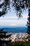 Downtown Portland Oregon in the late afternoon sunlight as viewed from Pittock Acres Park at Pittock Mansion, showing the city nestled in the Willamette Valley with Mt. Hood visible in the distance.