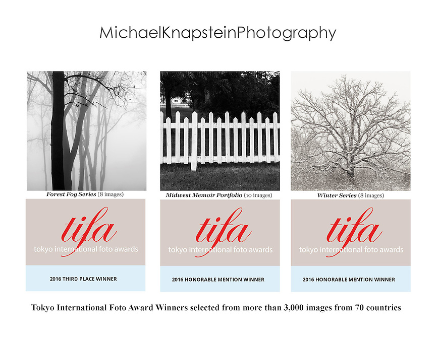 """Michael Knapstein received 26 awards in the Tokyo International Foto Awards (TIFA) including Third Place for the """"Forest Fog"""" series and Honorable Mention for the """"Midwest Memoir"""" portfolio."""
