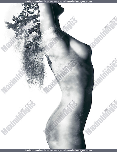 Fine art nude artwork of beautiful naked woman body with nature pattern of trees and leaves double exposed on it, isolated on white background