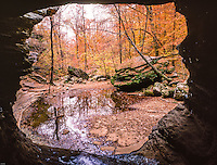 Cave framing forest, Buffalo National River, Arkansas, Lost Valley