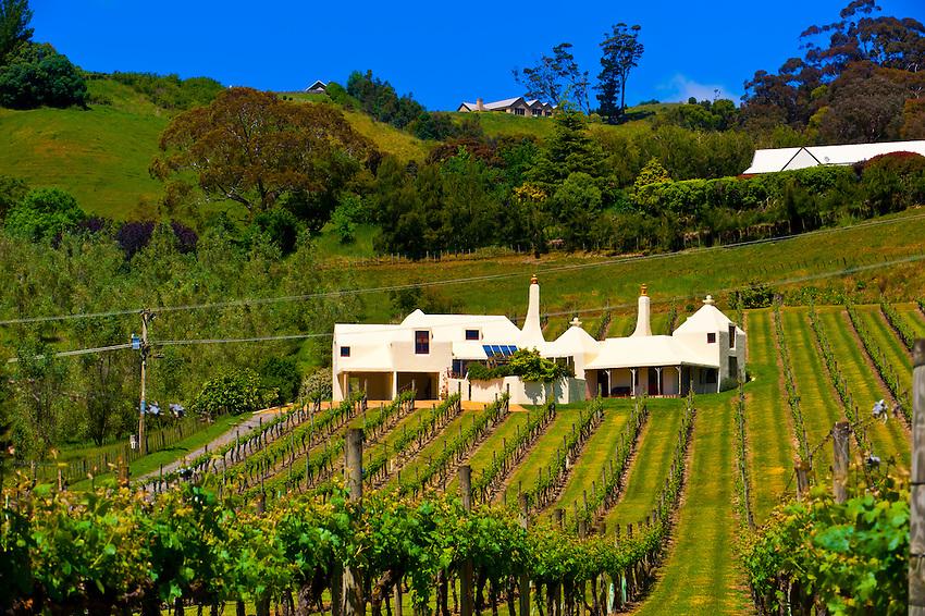 Te Mata Estate (Coleraine) winery, Havelock North, Hawkes Bay, North Island, New Zealand