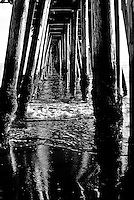 Gentle waves from the sea are rolling through pier pilings viewed below a pier with muscles attached rendered in a black and white photo