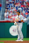 28 August 2010: St. Louis Cardinals first baseman Albert Pujols in action against the Washington Nationals at Nationals Park in Washington, DC. The Nationals defeated the Cards 14-5 to take the third game of their 4-game series. Mandatory Credit: Ed Wolfstein Photo